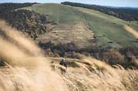 Łemkowyna Ultra-Trail 2019, szlak