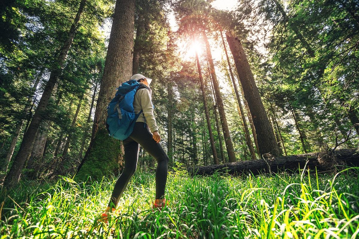 spacer sposobem na stres