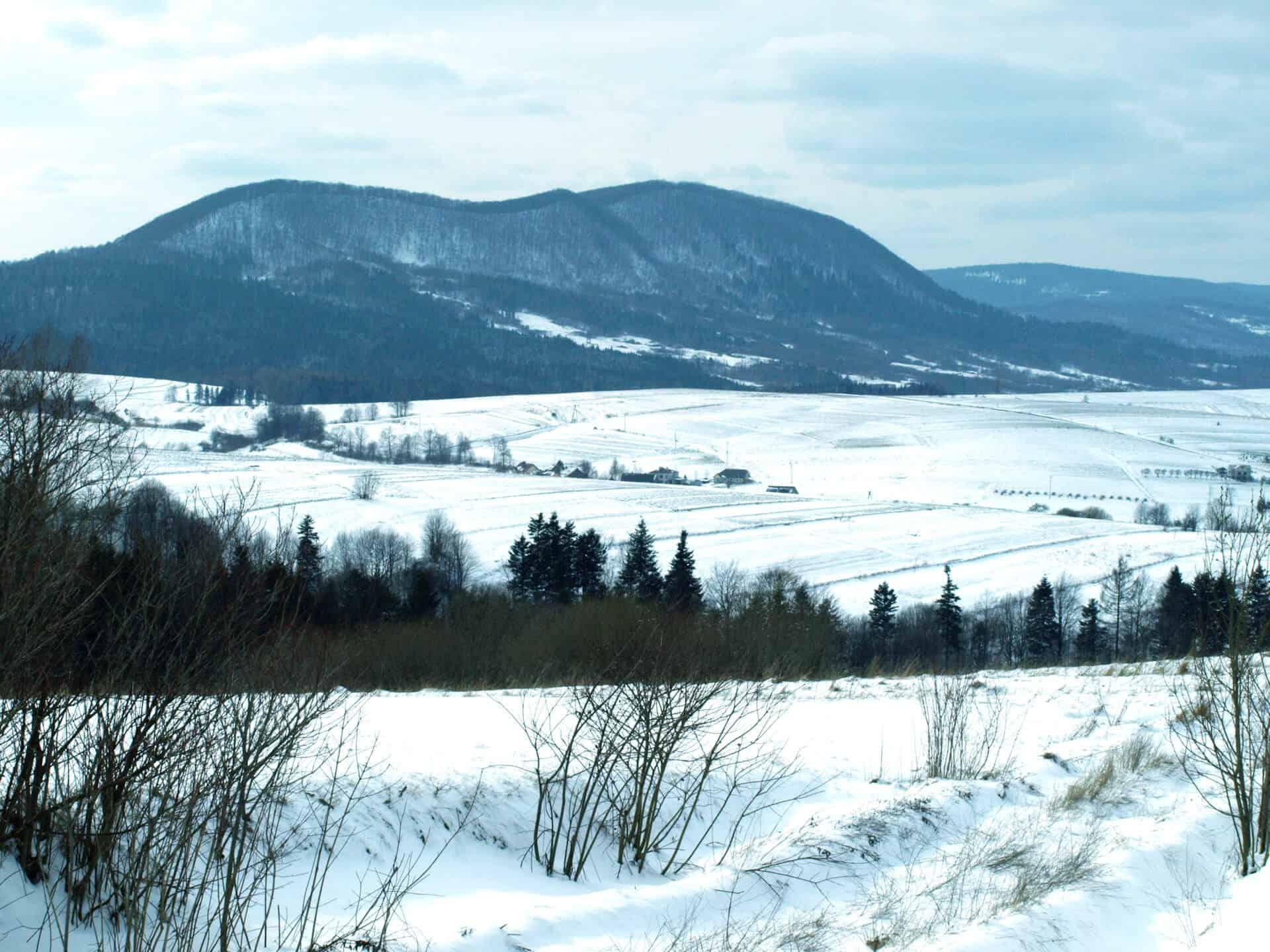 Zimowy krajobraz i góra Cergowa w tle
