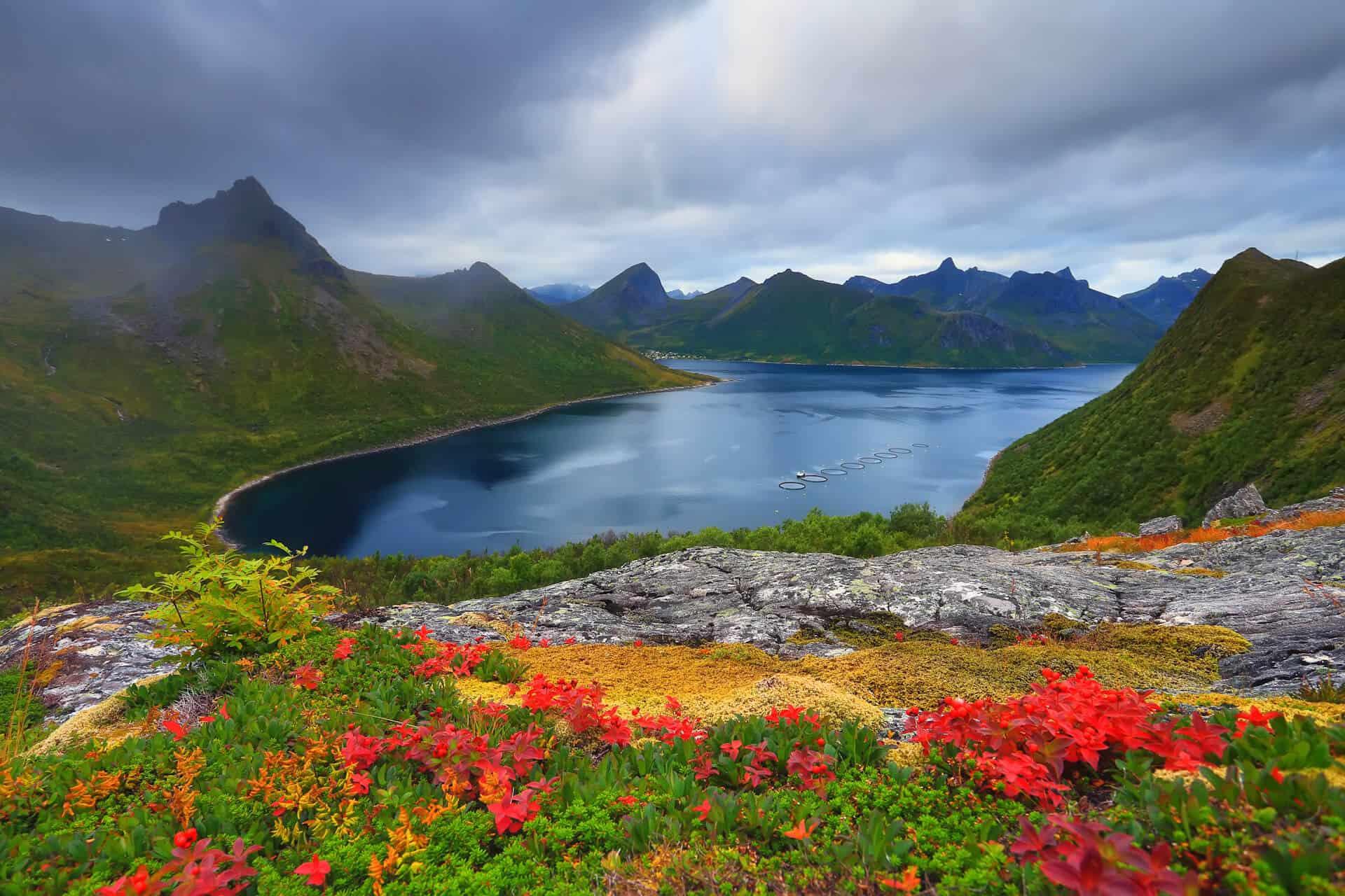 Laponia kolorowy krajobraz