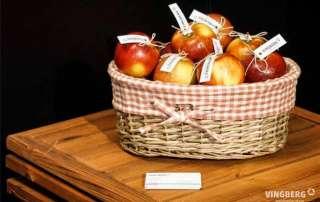 Stoisko Vingberg na Międzynarodowych Targach Rzeszowskich 6-8.04.2018 r., kosz z jabłkami od Vingberg