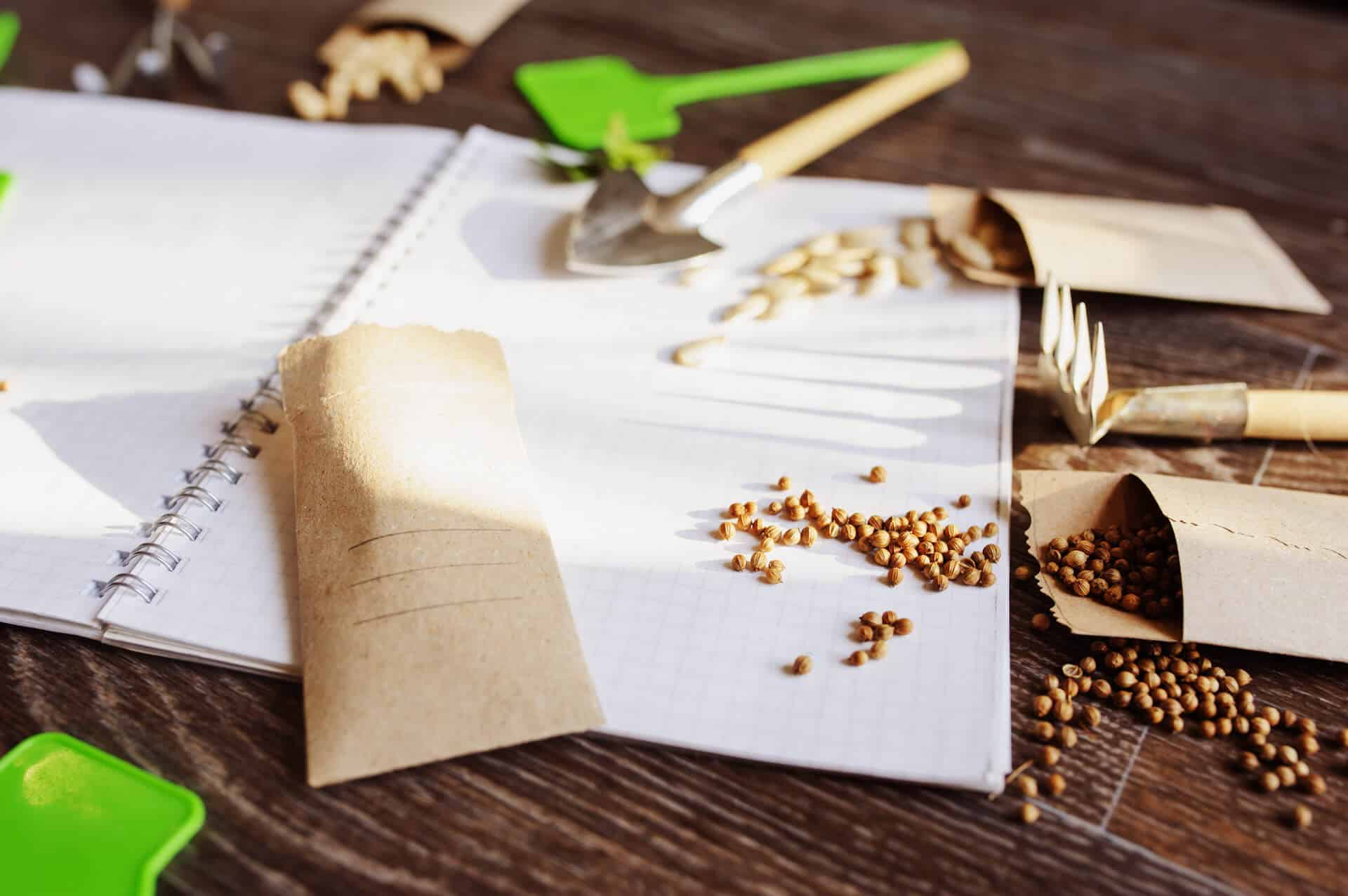 Zeszyt i nasiona